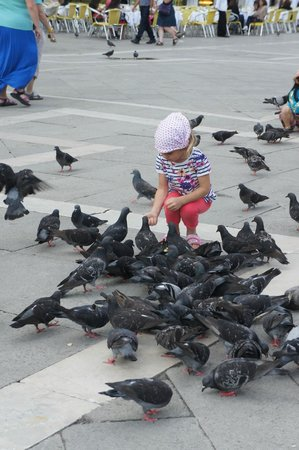 St. Mark's Square: os pombos e as crianças