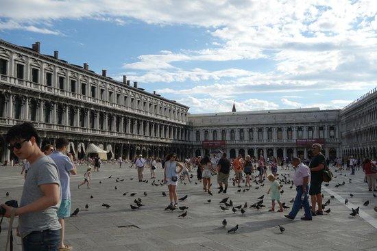 Piazza San Marco (Plaza de San Marcos): durante o dia...