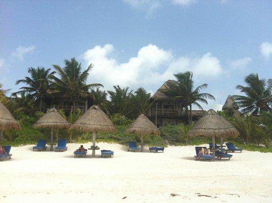 Encantada Tulum: tulum beach
