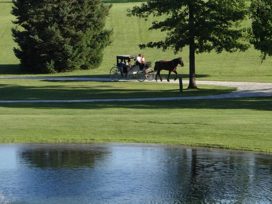Essenhaus Inn & Conference Center: Carriage rides around the grounds