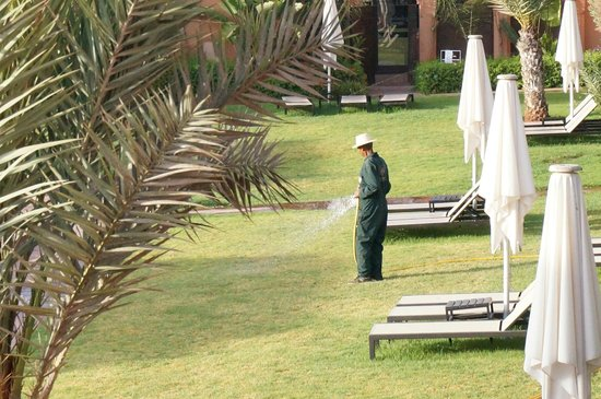 Adama Resort: Resort grounds