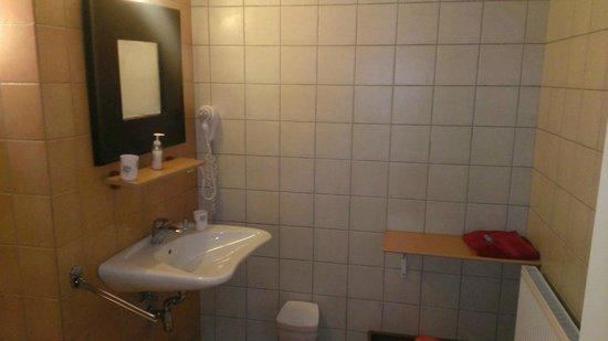 La Dominotte : Oversized sink, unpotent blow-dryer and towel rack (and shampoo bottle)