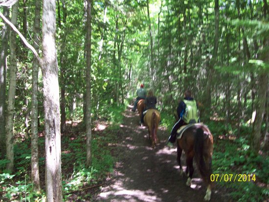 Cindy's Riding Stable Market Street: On our own on the trail