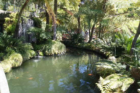 Monte Palace Tropical Garden: Beautiful gardens