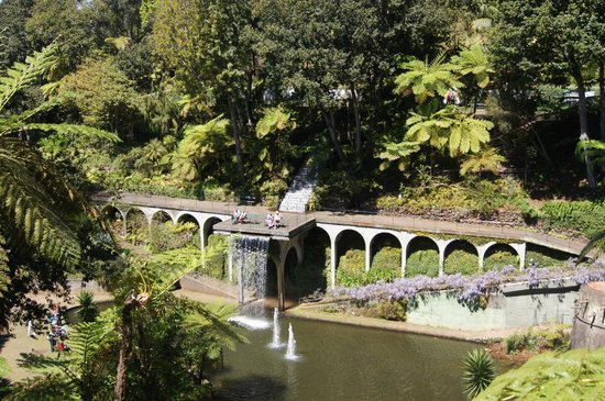 Monte Palace Tropical Garden: In the beautiful gardens