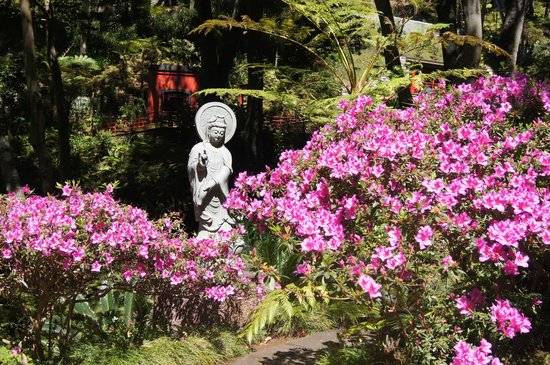 Monte Palace Tropical Garden: colourful gardens