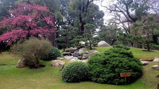 jardin japones comienzo del jardn japons