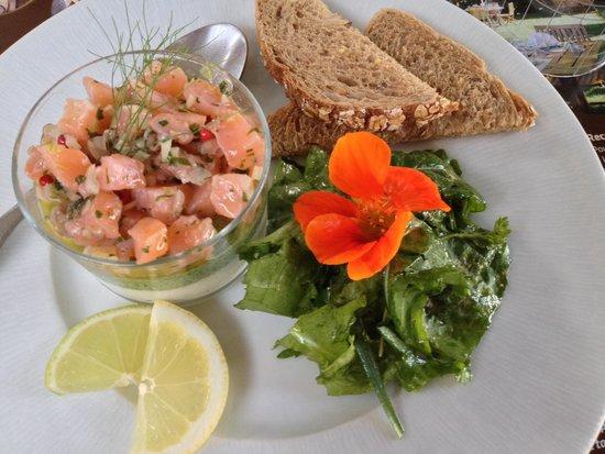 Ferme Auberge du Bruel: Mousse potagère et tartare de truite saumonée