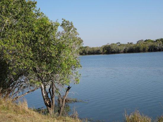 Lufupa Bush Camp: River view
