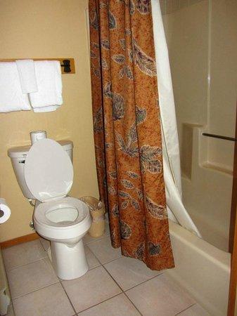 The Pointe Hotel & Suites: Nice bathroom