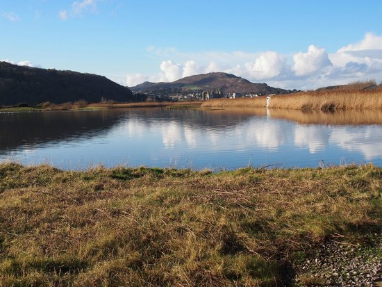 RSPB Conwy Nature Reserve
