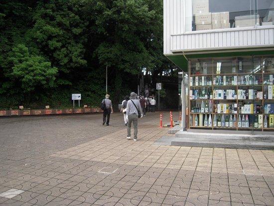 Ryoma Sakamoto Bronze Statue: 桂浜に着き龍馬像に向かう