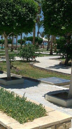 Festival Shedwan Golden Beach Resort: территория отеля