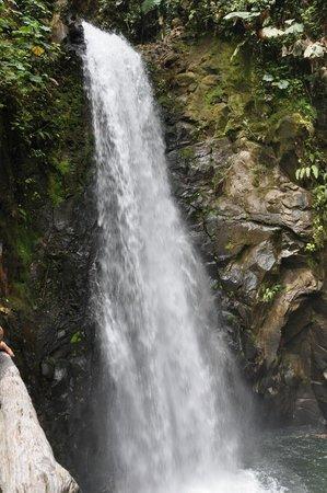 Peace Lodge: White Magic Waterfall