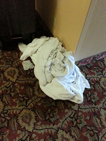 Ramada Lexington North Hotel & Conference Center : Random dirty laundry strewn all throughout the hallway at both check-in and departure