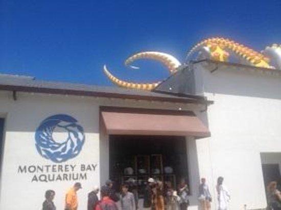 Monterey Bay Aquarium : Entry