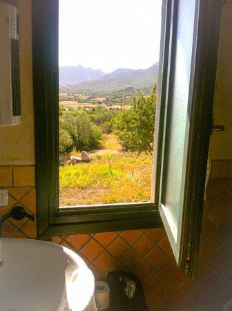 Locanda Murales : Bathroom view