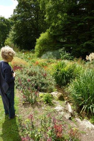 Trengwainton Garden: beekje