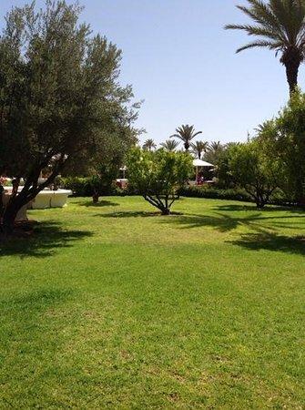 Murano Resort Marrakech : verdoyant
