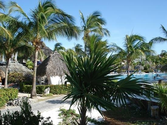 Sol Cayo Largo: Un site magnifique