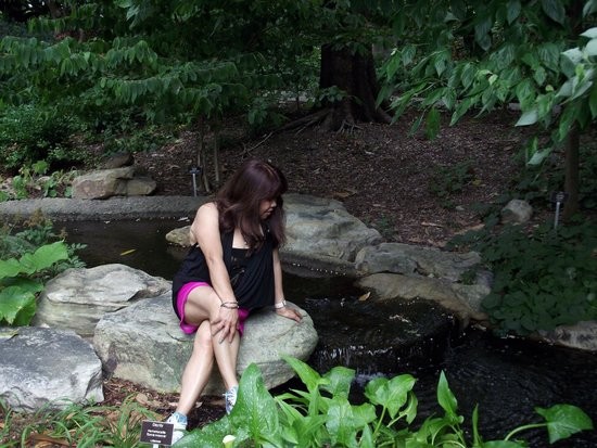 Lewis Ginter Botanical Garden: Just trying to cool off