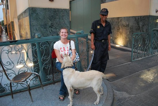 Fairmont Cairo, Nile City: Friendly security and K-9