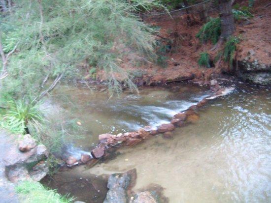 Kerosene Creek : A small creek