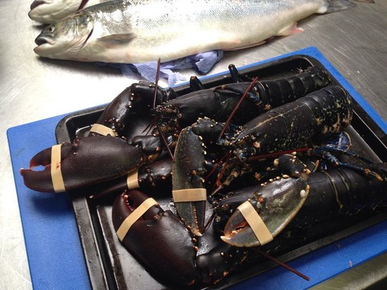 Hooked Restaurant: Fresh lobster caught locally at Boulmer
