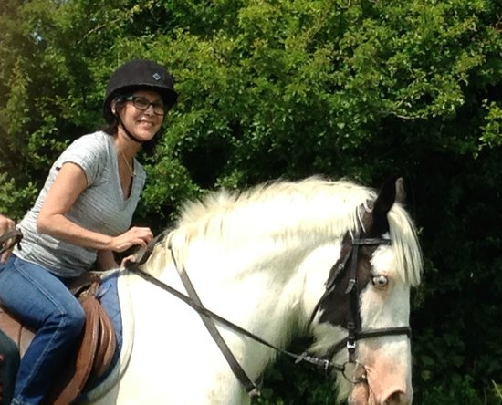 Drumcliffe Equestrian: If you can't ride your own horse visit Patricks place. . .just like at home.
