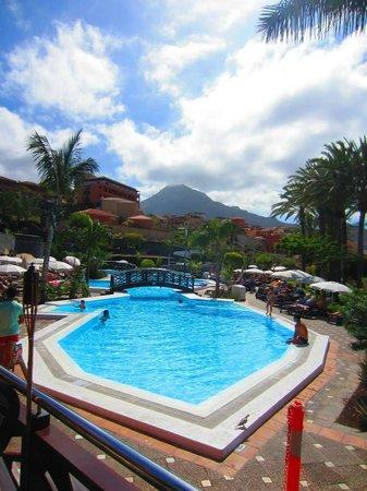 Melia Jardines del Teide : Pool area 1
