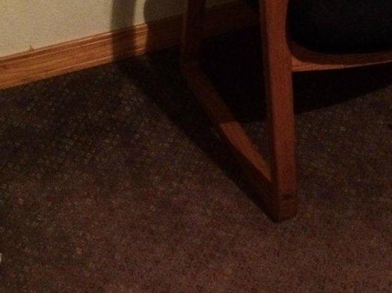 Little Shamrock Motel: Floor stains
