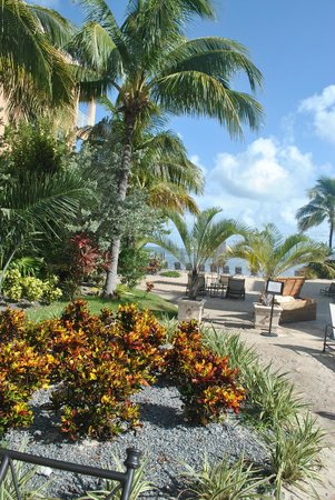 Key West Marriott Beachside Hotel: View from the pool
