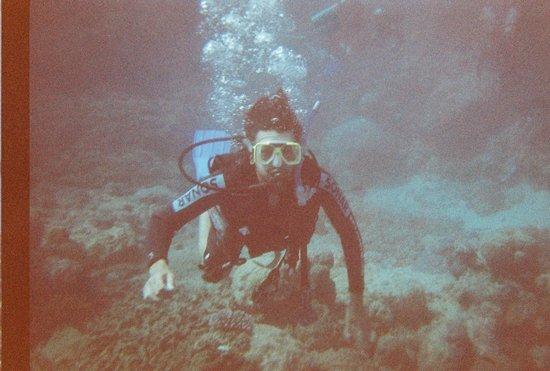Reef Experience: ian