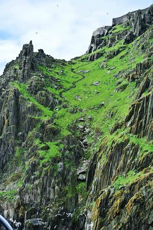 Casey's Skellig Islands Tours: Skellig Michael