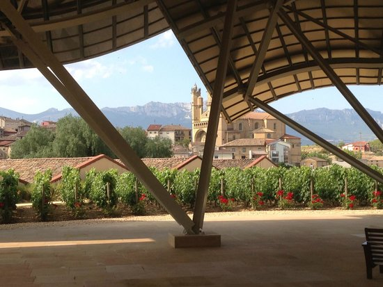 Hotel Marques de Riscal a Luxury Collection Hotel: View of vineyards from 1st (entry) level of hotel.