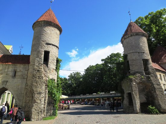 Traveller Tours: Viru gate