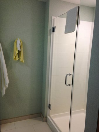 SpringHill Suites Indianapolis Downtown: shower.