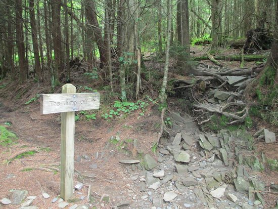 Charlies Bunion: Side trail to Jump Off