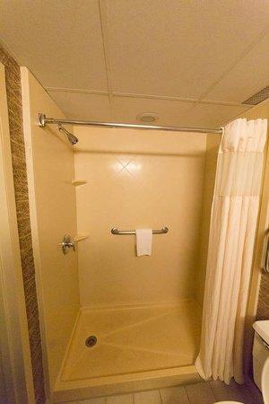 Wyndham Garden Glen Mills Wilmington : Shower