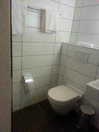 Hotel Testa Grigia : Banheiro