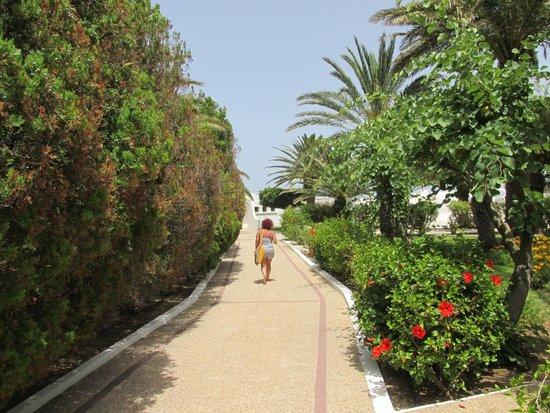 El Mouradi Port El Kantaoui : 12