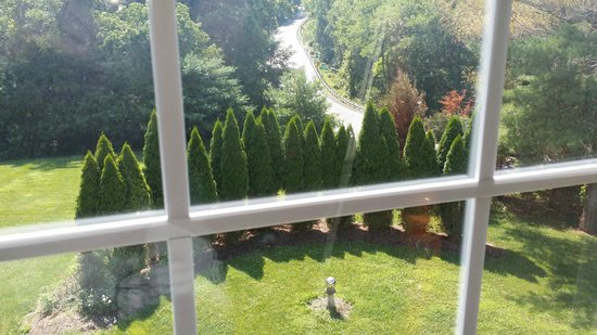 Elk Forge B&B Inn, Retreat and Day Spa : View from room
