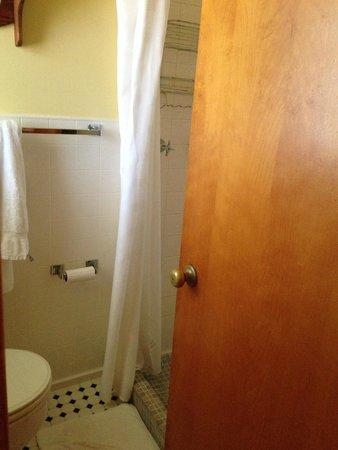 Ludington Blue Spruce Inn: bathroom.