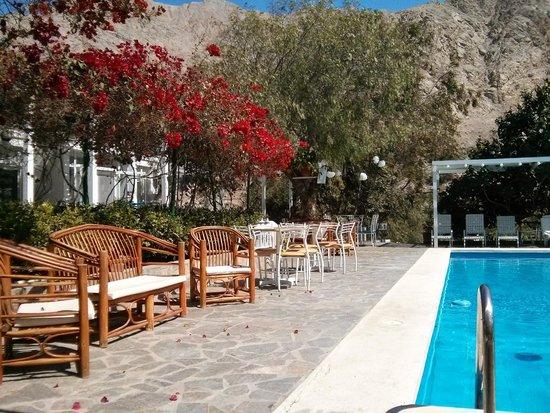 Hotel Los Palomos: Piscina y entrada al comedor