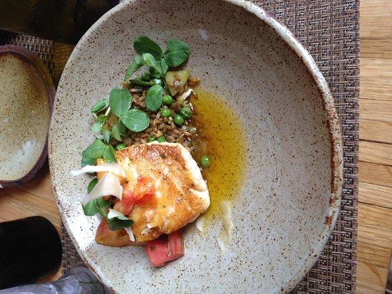 Husk Restaurant: Grouper