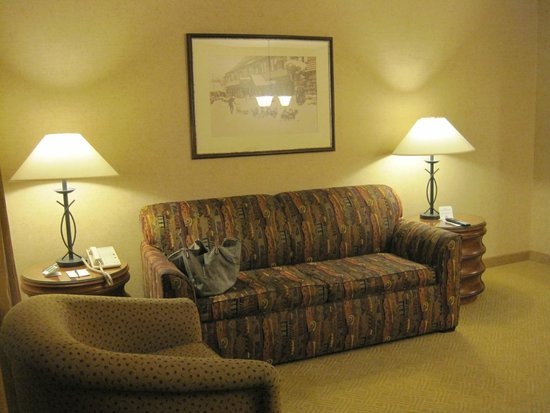 Lake Tahoe Resort Hotel : Living Room