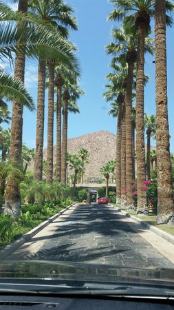 Royal Palms Resort and Spa: Driveway