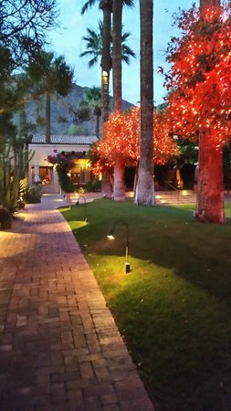 Royal Palms Resort and Spa : Landscaping