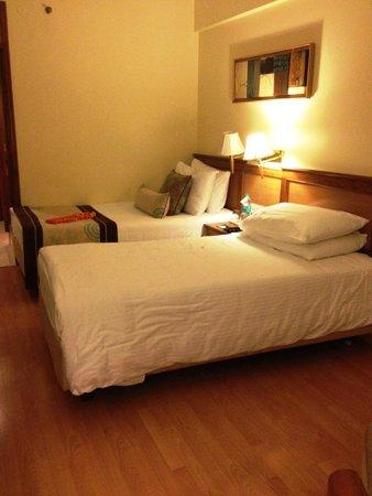 Jaypee Siddharth: Comfortable room