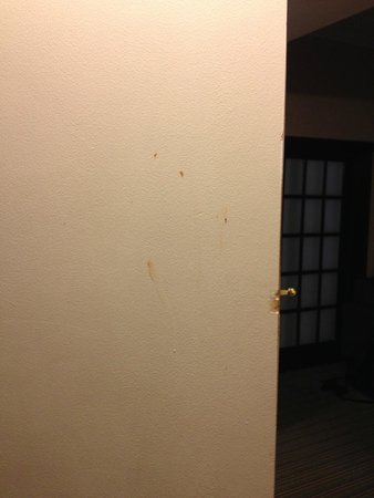 Ramada Plaza Holtsville Long Island: Not sure what was on the door.